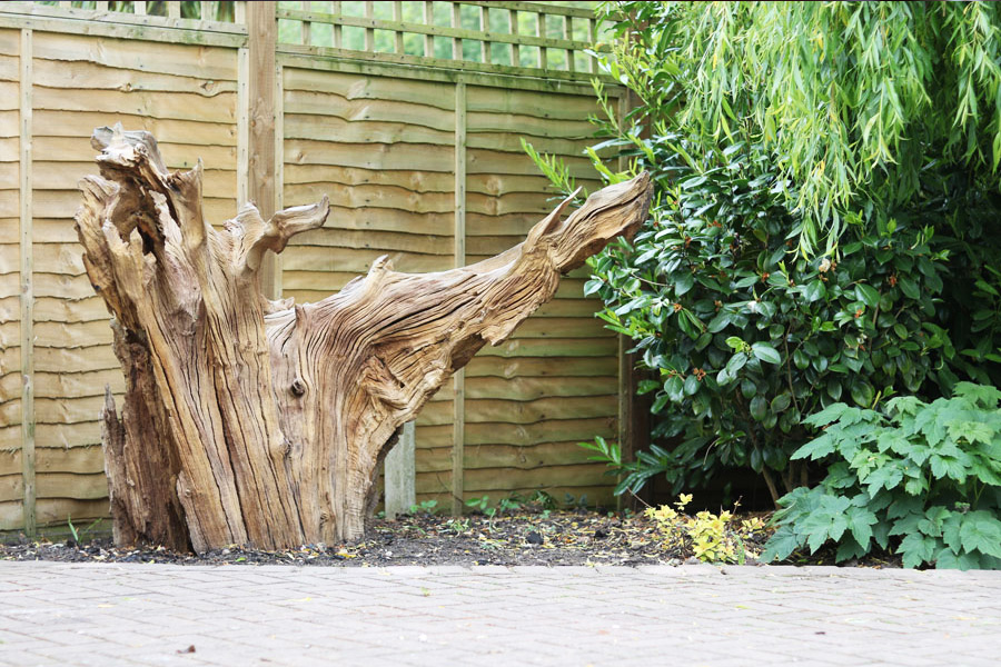 Feature Stump