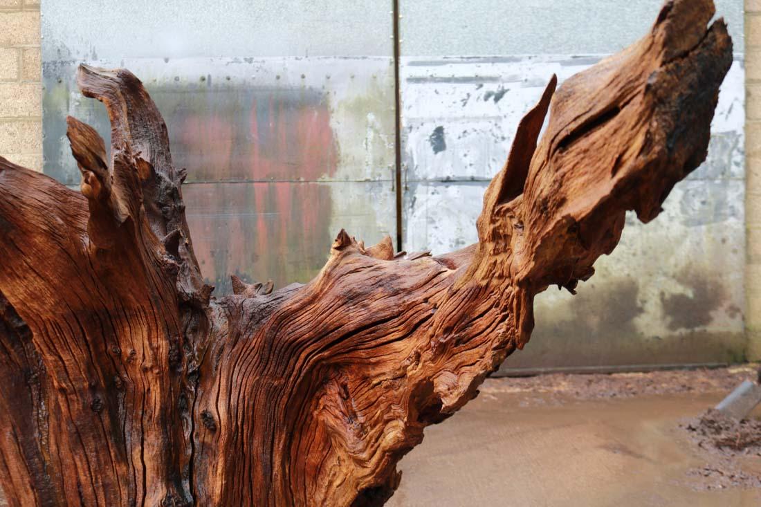 Feature Stumps