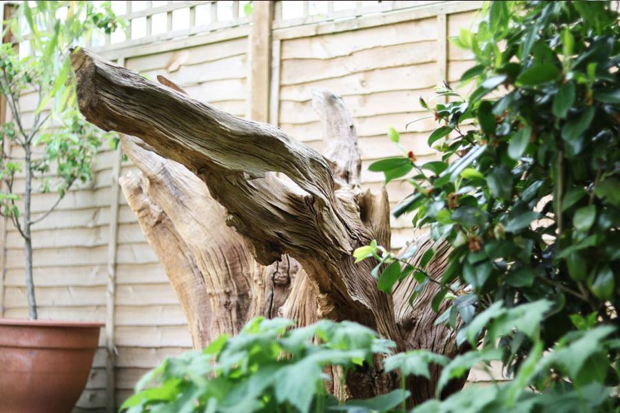 Feature Stump
